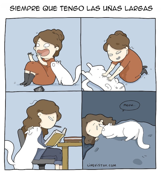 viviendo con gatos (5)