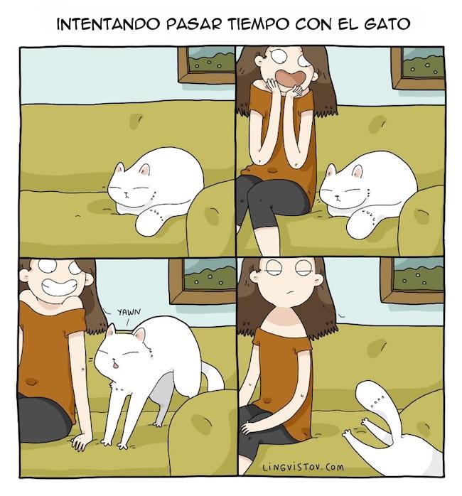 viviendo con gatos (6)