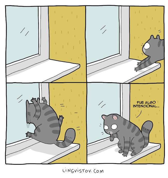 viviendo con gatos (7)