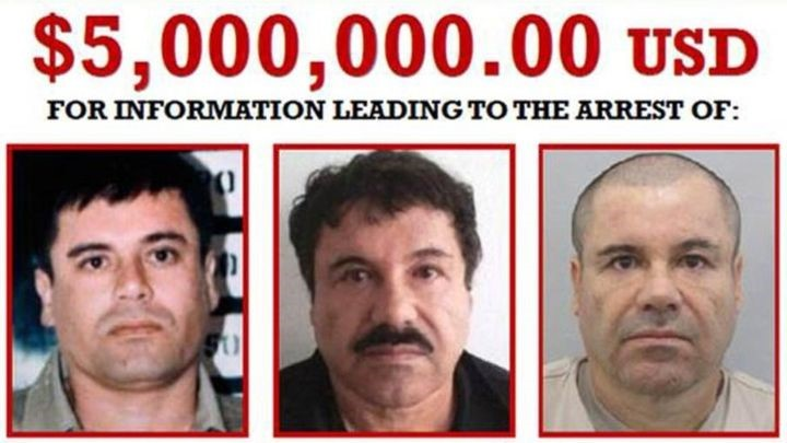 5 millones por la captura del chapo