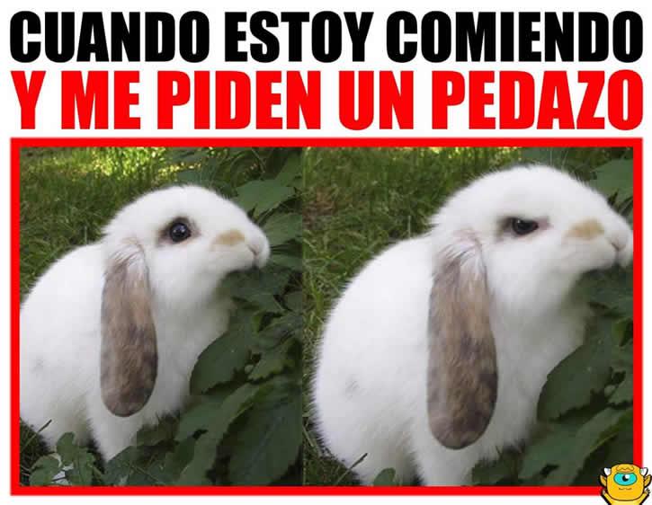 Marcianadas 309 241117001201 (143)