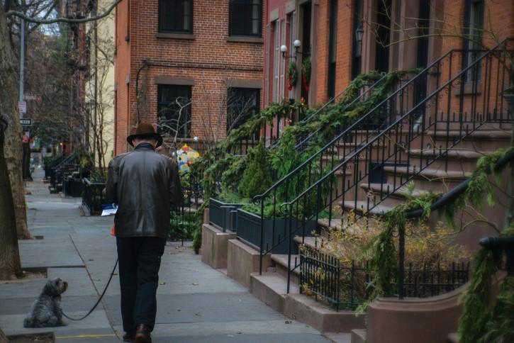 ancaino pasea a su pertro en Brooklyn