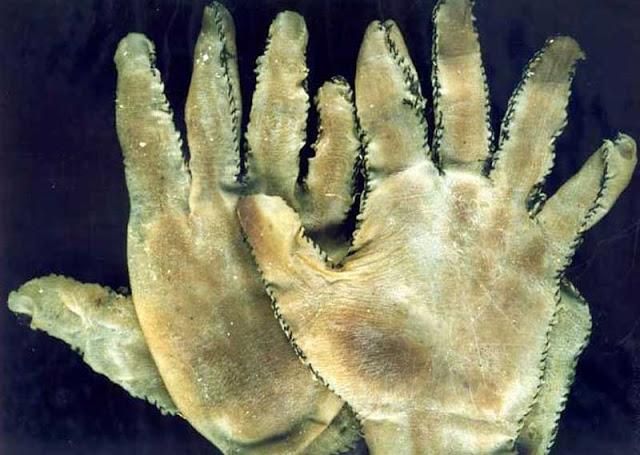 guantes de piel humana