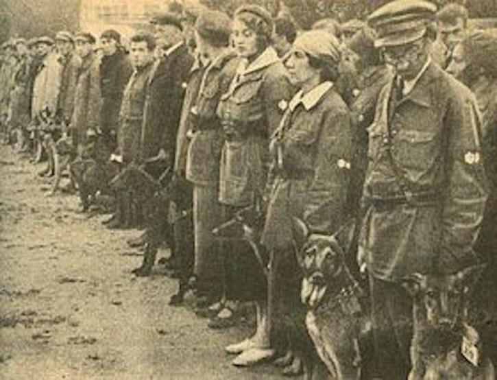 perros antitanque sovieticos