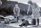 unidad 731 de japon prueba bacteriologica