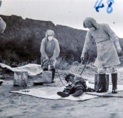 Los atroces experimentos de la Unidad 731