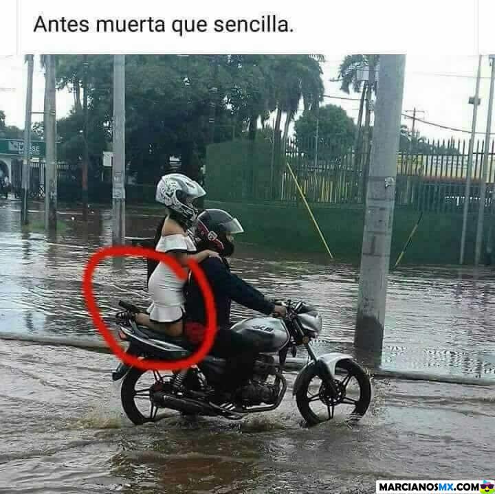 Marcianadas 310 011217001253 (51)