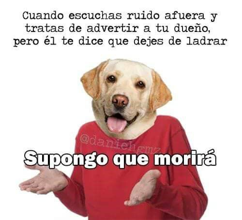 Marcianadas 313 221217001245F2017 (170)