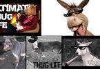 burros thug life