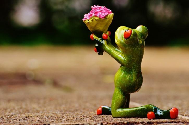 figura rana dando flores