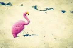 flamingo rosa plastico arena