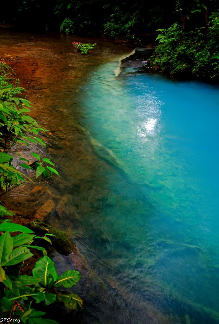 fotografia rio celeste costa rica belleza natural