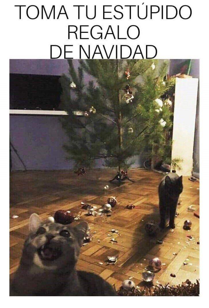 Marcianadas 314 050118001308 (189)