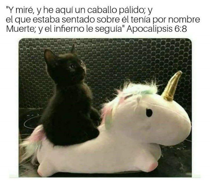 Marcianadas 315 1201Ene001208 (130)
