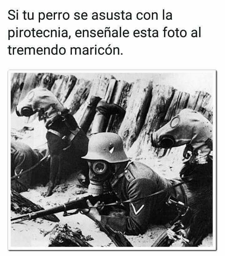 Marcianadas 316 190118001310 (254)