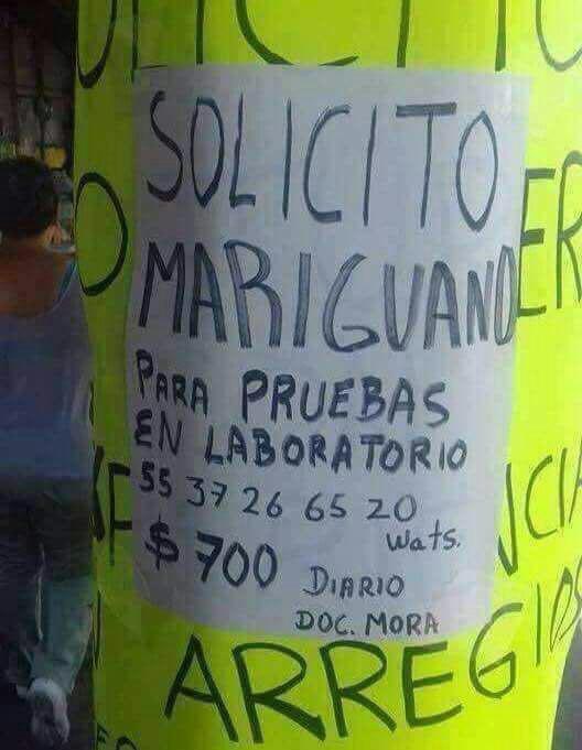 Marcianadas 317 26enero201801208 (177)