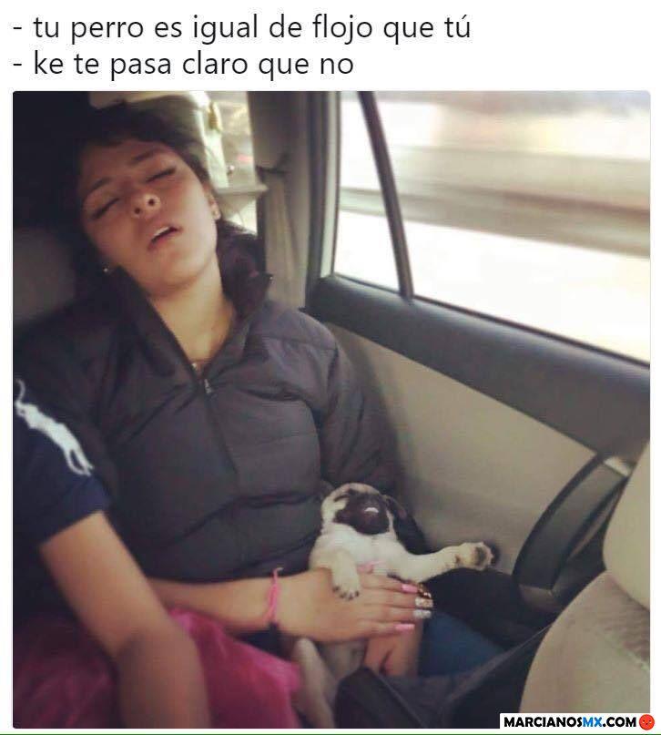 Marcianadas 317 26enero201801208 (4)