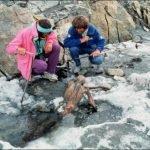 Ötzi, el hombre de hielo: el ser humano preservado más antiguo