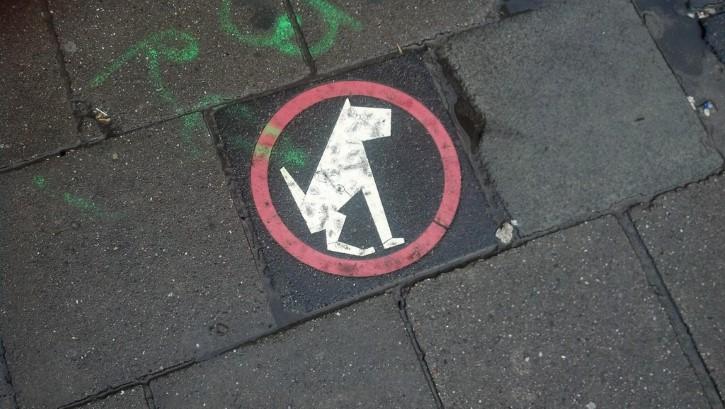 señal perro defecando