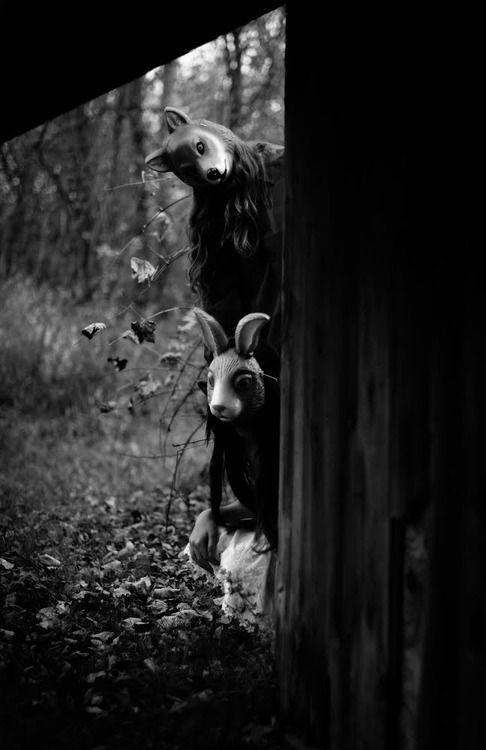 Terror Mascaras Animales En El Bosque