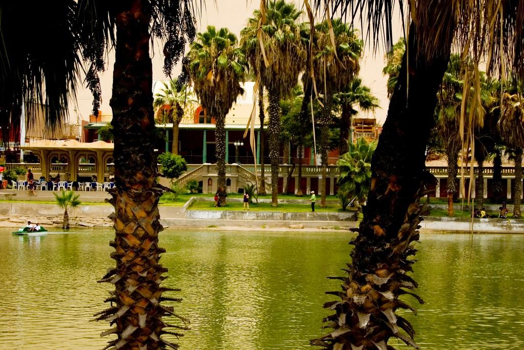 Huacachina oasis en peru (2)