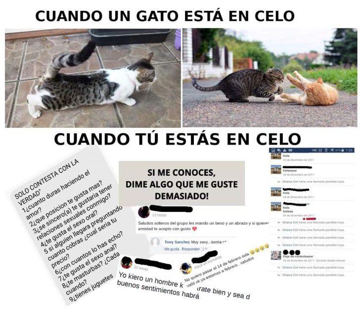 Marcianadas 319 09feb2018001221 (100)