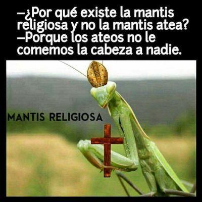 Marcianadas 320 160218001237 (49)