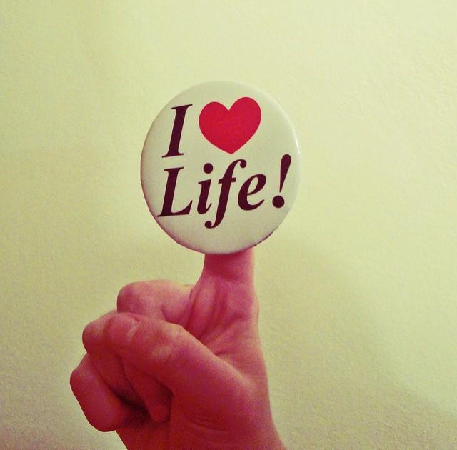 Amo la vida