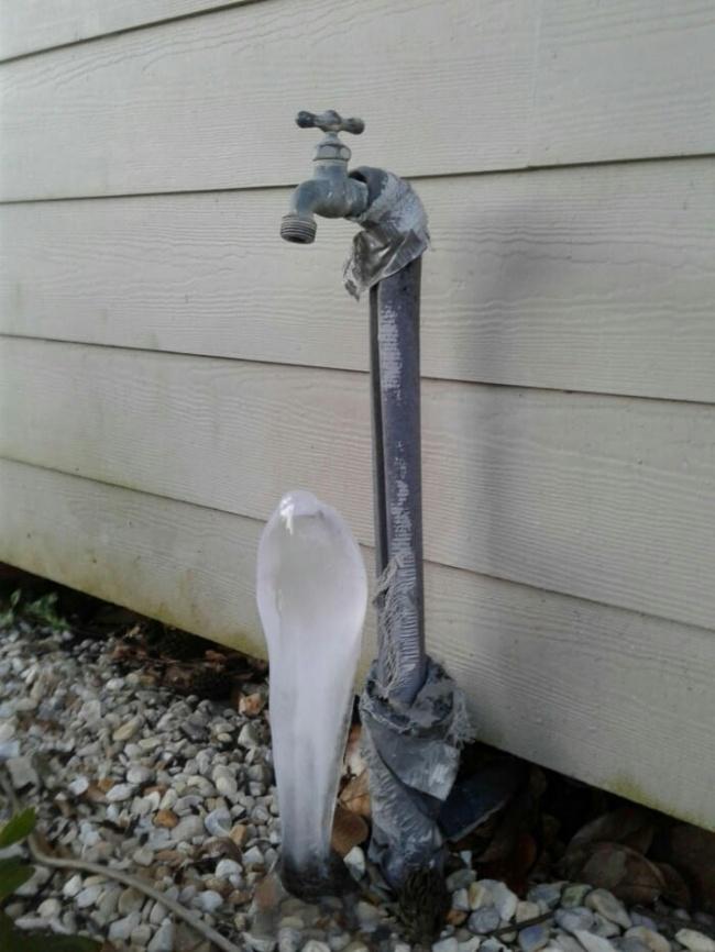 cobra de hielo