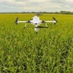 Drones Plantando Arboles