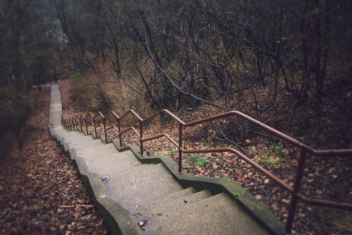 Escaleras en el bosque terror