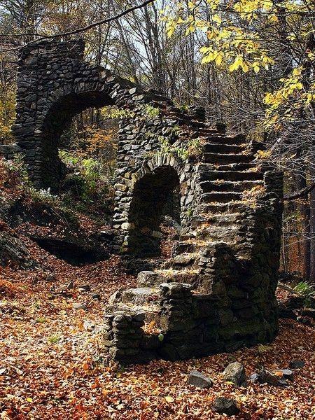 Escaleras en el medio de un bosque