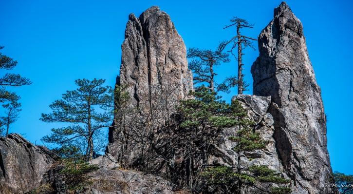 Formacion rocosa en el bosque