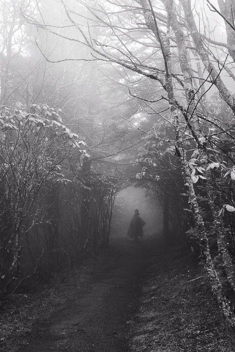 Hombre misterioso en el caminoi de un bosque