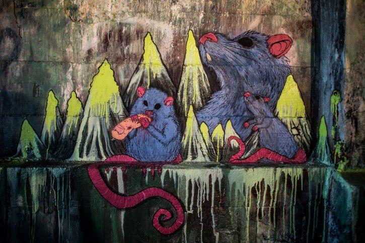 Ratas Grafiti En Alcantarilla
