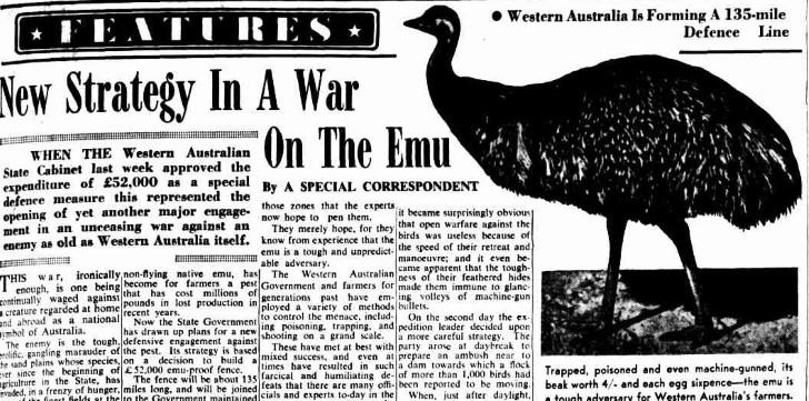 Recorte periodico guerra emus