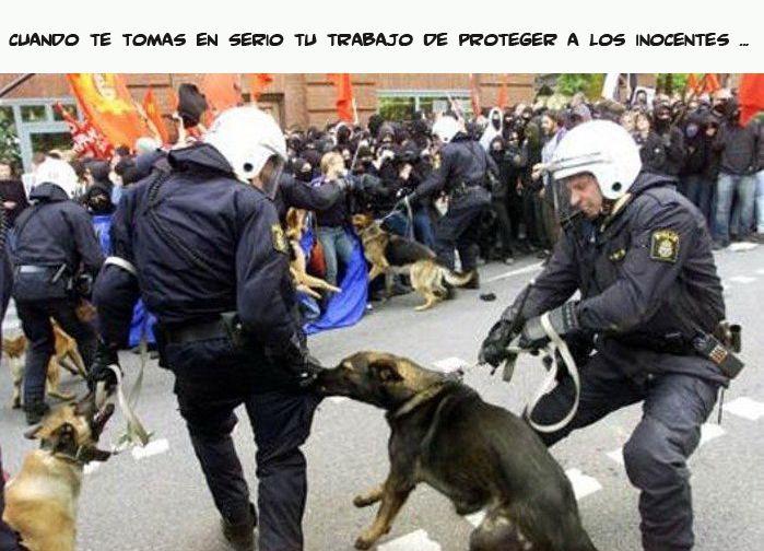Marcianadas 323 090318001353 (224)