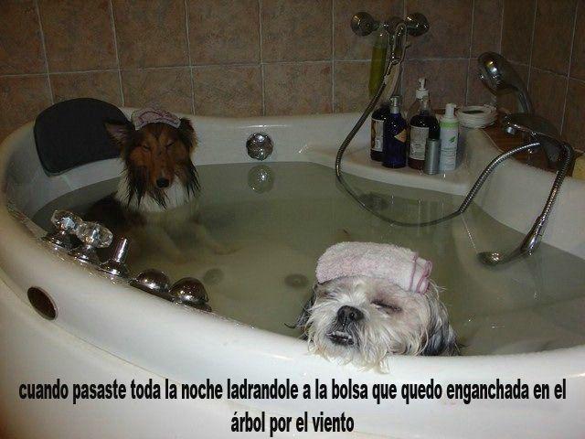 Marcianadas 323 090318001353 (234)