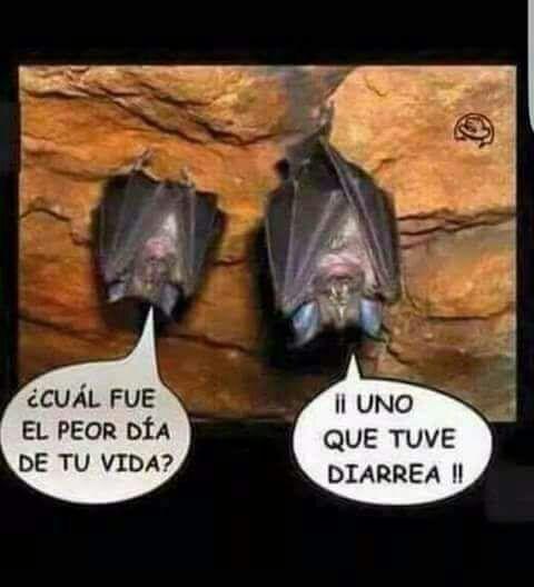 Marcianadas 323 090318001353 (47)