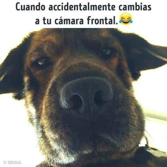 Marcianadas 323 090318001353 (58)