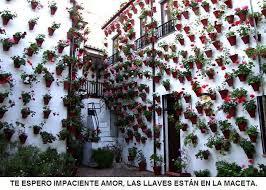 Marcianadas 323 090318001353 (99)