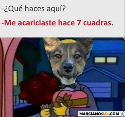 Marcianadas 324 160318001810 (248)