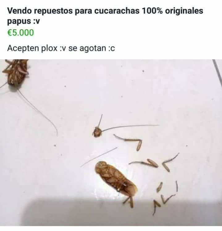 Marcianadas 324 160318001810 (270)