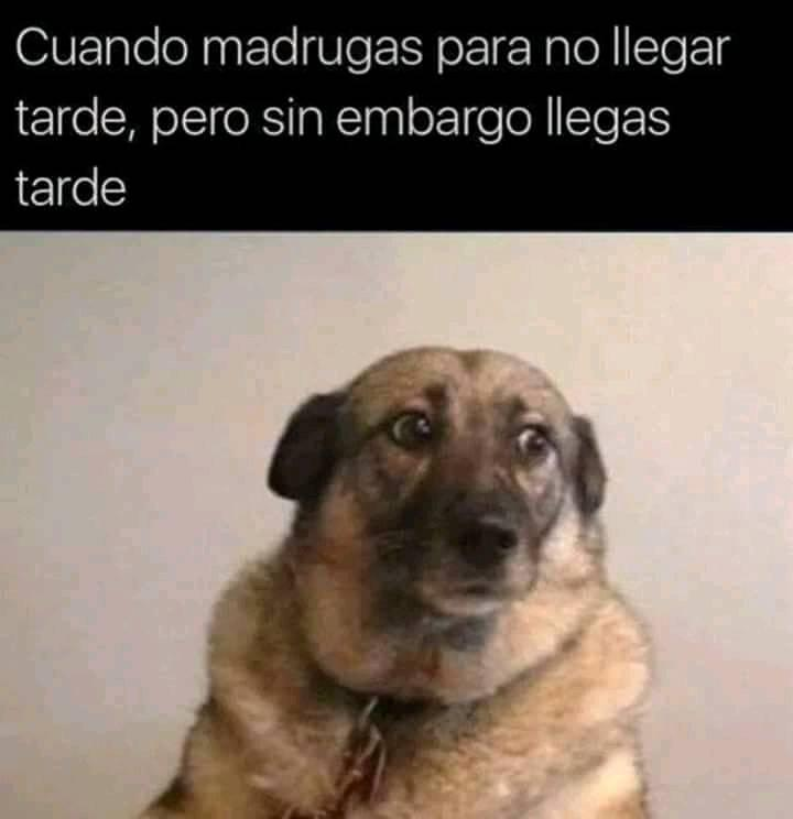 Marcianadas 324 160318001810 (289)