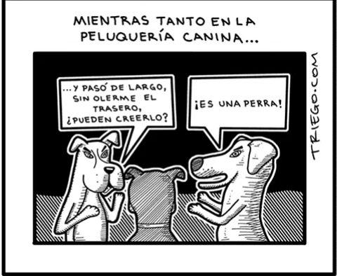 Marcianadas 325 230318002215 (129)