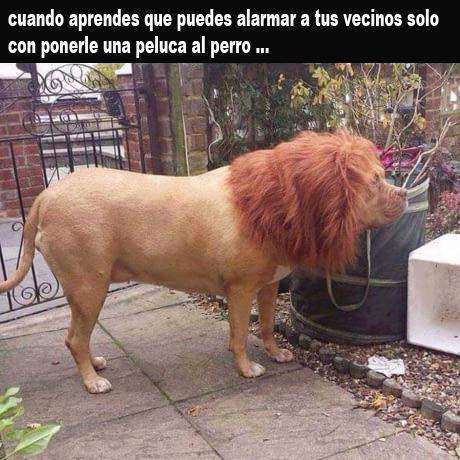 Marcianadas 325 230318002215 (192)