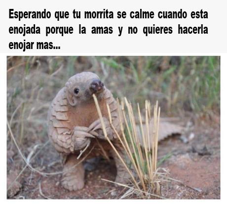 Marcianadas 325 230318002215 (194)