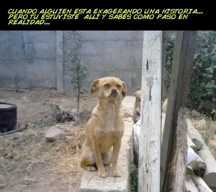Marcianadas 325 230318002215 (223)