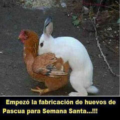Marcianadas 325 230318002215 (56)