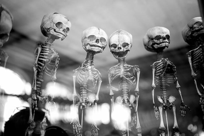 Esqueletos extraterrestres